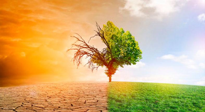 Bancos de desarrollo elevaron un 28% los préstamos contra cambio climático