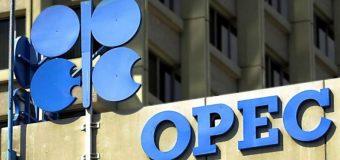 OPEP: El consumo de petroleo subirá un 1.1% en 2020, hasta 101 mbd