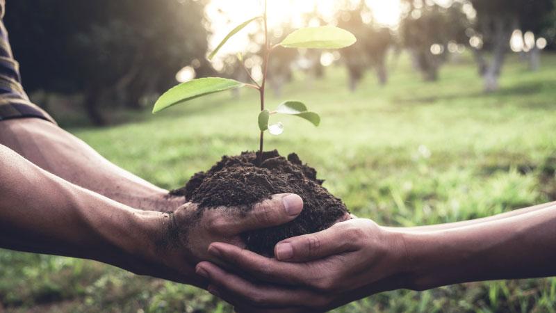 Une Scotiabank a Mastercard para lanzamiento Coalición Priceless Planet en el Caribe