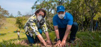 En Plan Sierra el Grupo Popular sembro 1,500 árboles
